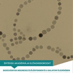 Előadás: Bioásványok mágneses élőlényekben és a Balaton üledékében