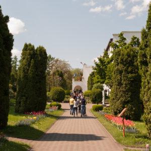 """Grădina Botanică """"Alexandru Borza"""" a UBB va găzdui expoziția de fluturi """"Petale zburătoare"""""""